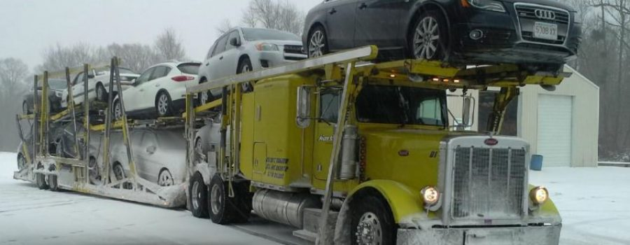 Snow Bird Transport